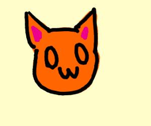 orange 0w0 cat