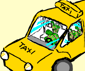 turtle taxi sevice