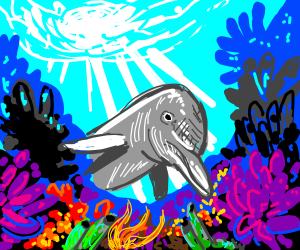 Dolphin in a Coral Reef