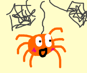 cute orange spider hanging from a web string