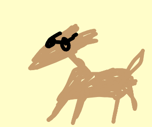 Dog fox thing s face wearing glasses