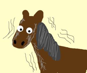 Shaky old horse