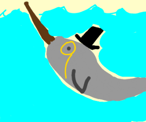 Fancy Narwhal