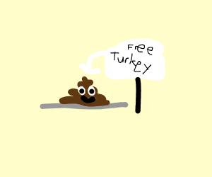 questionable Turkey