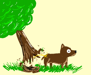 tree pees on dog