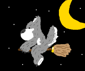 Wolf flying on a broom