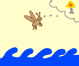 Moth crossing the Ocean