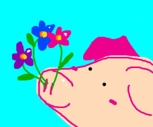 Pig Grows Flowers in Snout