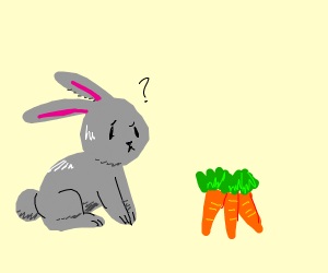 Rabbit is confused by carrots