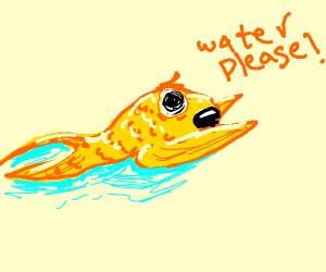 Fish Crawling