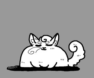 Thicc cat