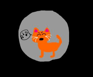 Cat singing on the moon