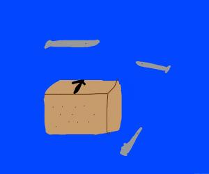 Minnow Box Cover