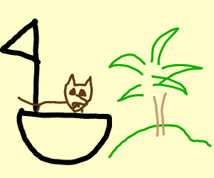 wolf in boat next to island