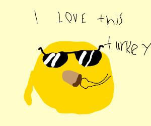Sun in sunglasses eats turkey leg