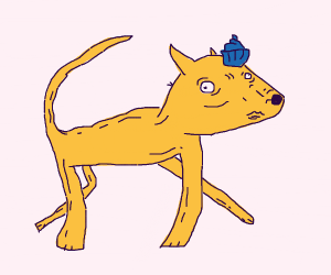 Fox with blue muffin on head