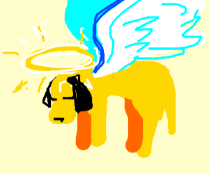 dog with angel wings flying