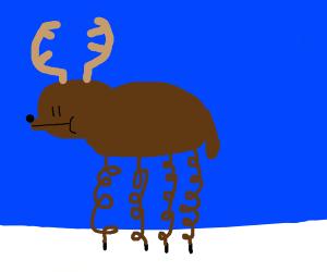 Reindeer with slinky legs