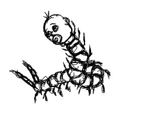Baby Boy Centipede