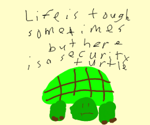 Wholesome turtle