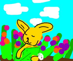 Very Shy Yellow Bunny