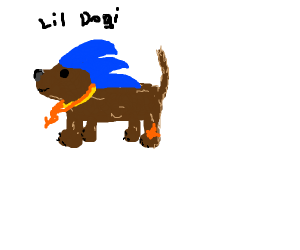 a dog with SANIC hair and gold chains