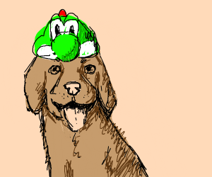 Dog with a frog hat