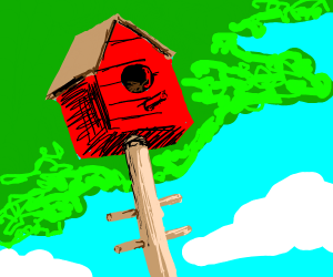 birdhouse from worm's eye view