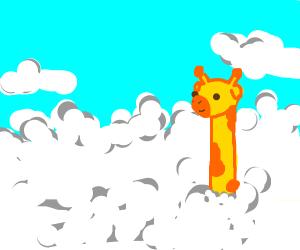 girrafe is taller than clouds