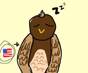 An eagle does a sleep