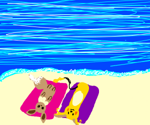 Eevee and Raichu chilling at the beach
