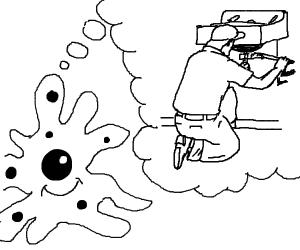 Amoeba dreams of being a plumber