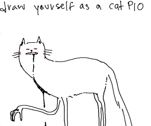 draw yourself as a cat PIO