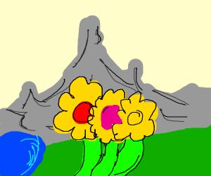 Wonderful landscape with close-up Flowers