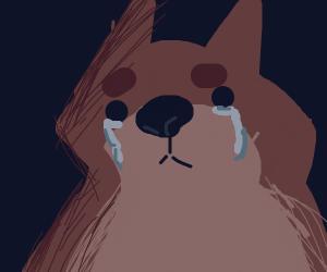 sad doggo