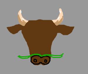 bull w/ green mustache