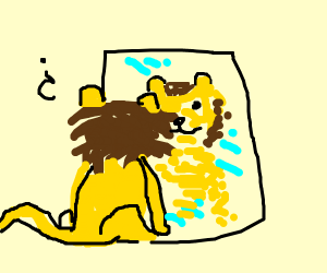 Lion who can't comprehend itself