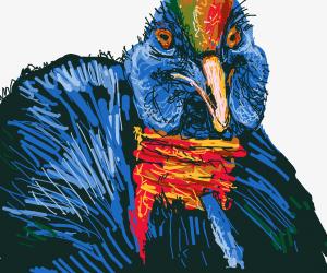 Turkey stares intensely