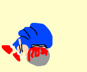 sonic the hedgehog gets hurt by falling rock