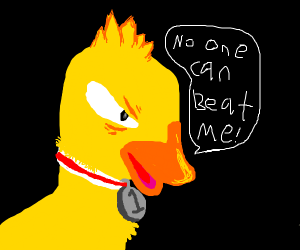 Duck wins again, no one can beat DUCK