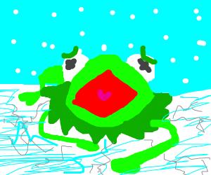 Kermit carefully crawls across thin ice