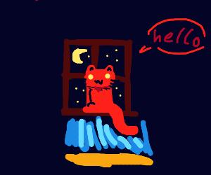 Red cat at night, awates