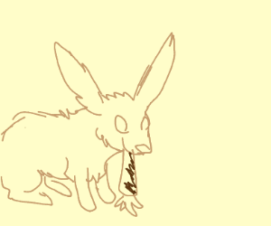A bunny eating A brown carrot
