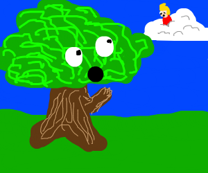 A tree worshiping the jazza god of weather