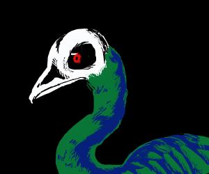 Bird has a skull on its head.