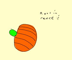 Pumpkin died :'(