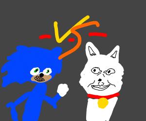 Realistic Sonic Vs Realistic Cat