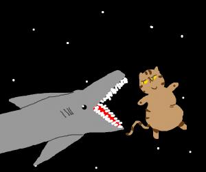 shark missile devours space cat