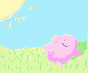 Ditto enjoying a day in the sun