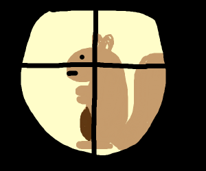 I've got a squirrel in my crosshairs